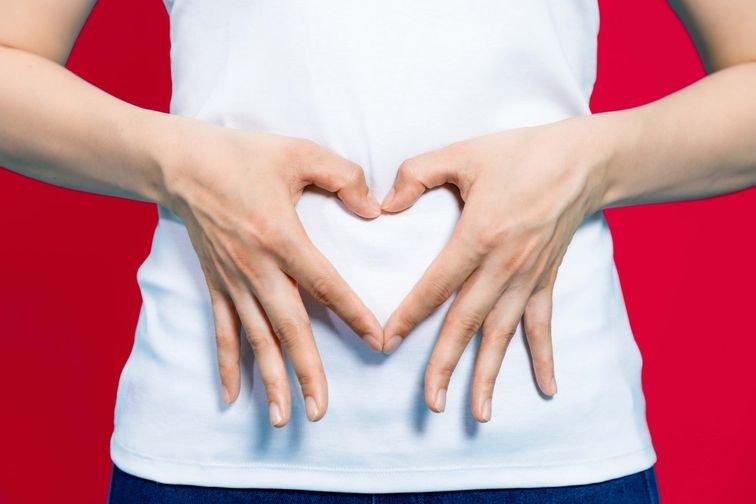 Los intestinos y el efecto prebiótico – Blog generalista